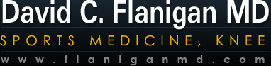 Dr. David Flanigan | Sports Medicine | Columbus OH